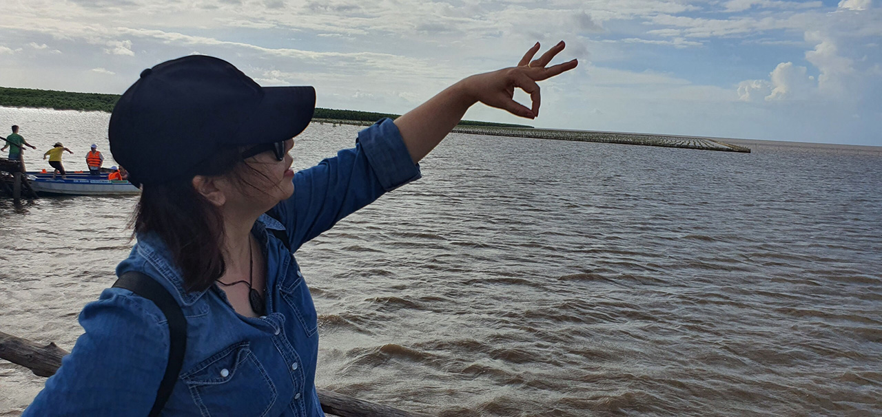 Trải nghiệm rừng ngập mặn cà mau