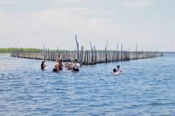 Một buổi khám phá trải nghiệm vùng Phá Tam Giang – Huế